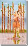 07 9 of wands