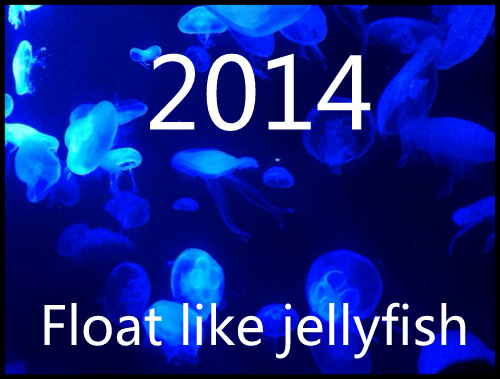 Float like a jellyfish in 2014